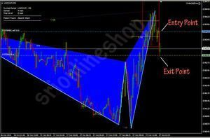 Como hacer copy trading forex mt4