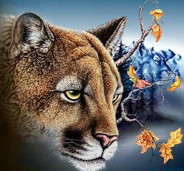 Hidden 6 cougars images by Stephen Michael Gardner will expand your mind and balance your brain hemispheres.