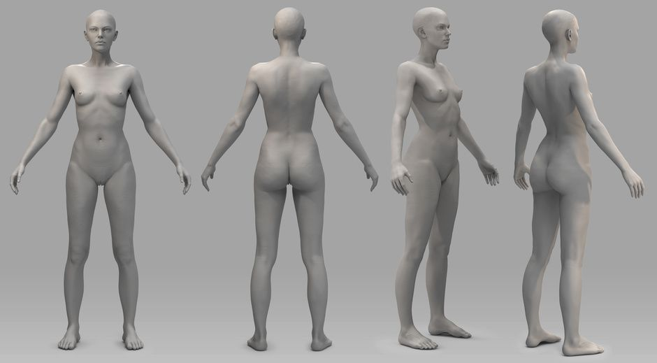 http://artpizarro.cgsociety.org/art/zbrush-female-anatomy-torso ...