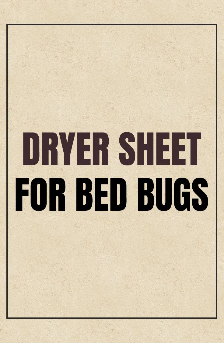 Dryer Sheet For Bed Bugs Bed bugs, Bugs, Dryer