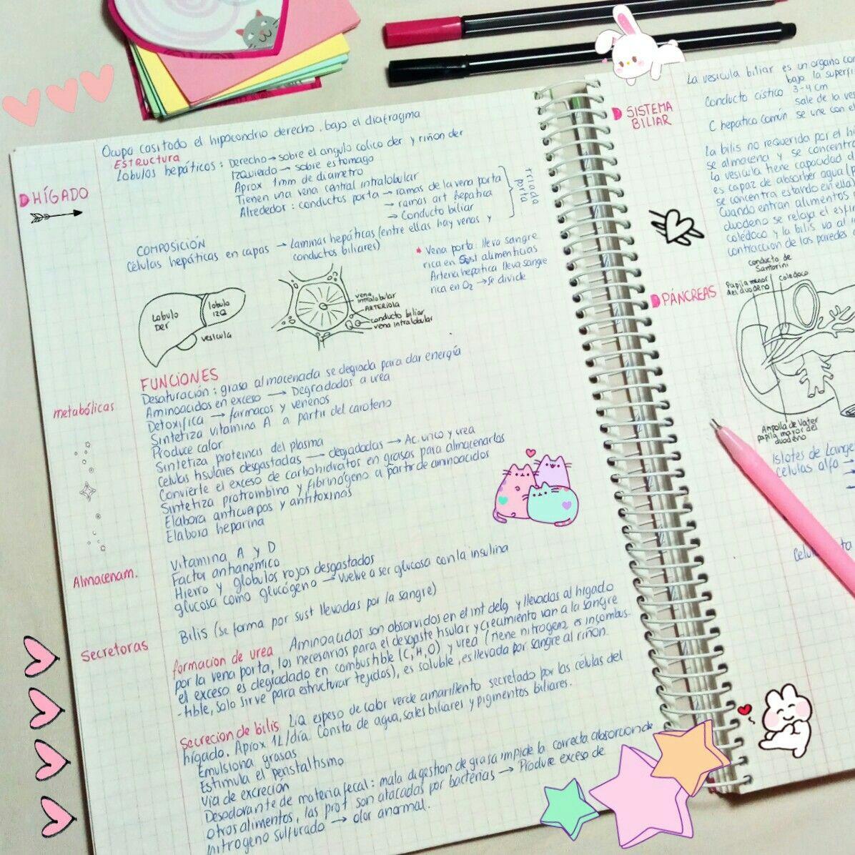 35++ Resumen en ingles de trabajo ideas
