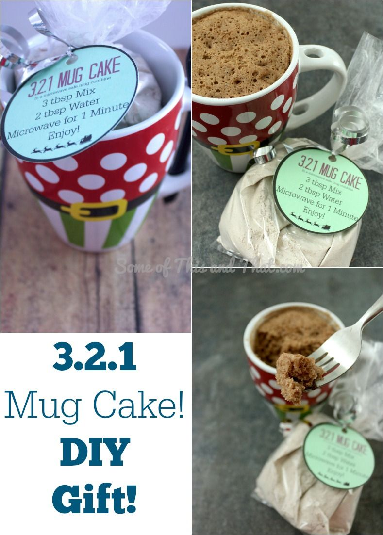 321 mug cake easy and fun diy gift pinterest easy diy gifts 321 mug cake makes a perfect and easy diy gift for any time of year make it for a friend as a gift or keep it all to yourself solutioingenieria Choice Image