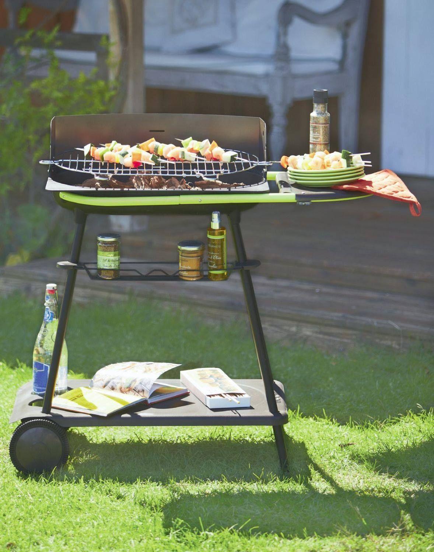 Barbecue Au Charbon De Bois : Un Goût Inimitable à Ses