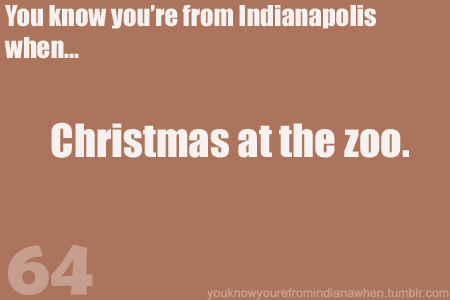 Christmas At The Zoo Indianapolis 2019.Pin By Lauren Hunt On You Know You Re From Indiana In 2019