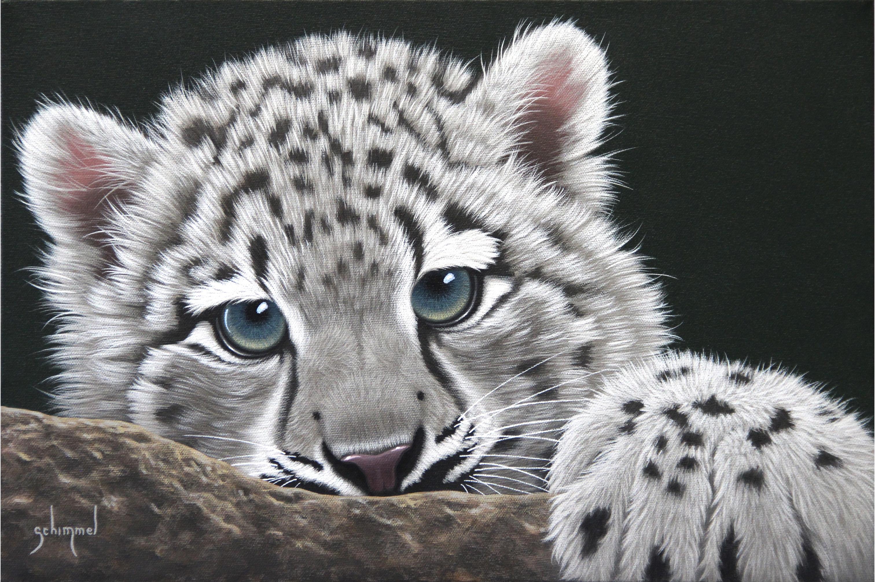 Young Snow Leopard By Schim Schimmel Cute Baby Animals Snow Leopard Art Cat Artwork