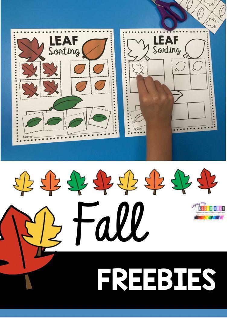 All About Fall Freebie Keeping My Kiddo Busy Fall Kindergarten Activities Social Studies Activities Preschool Fall Kindergarten [ 1052 x 752 Pixel ]