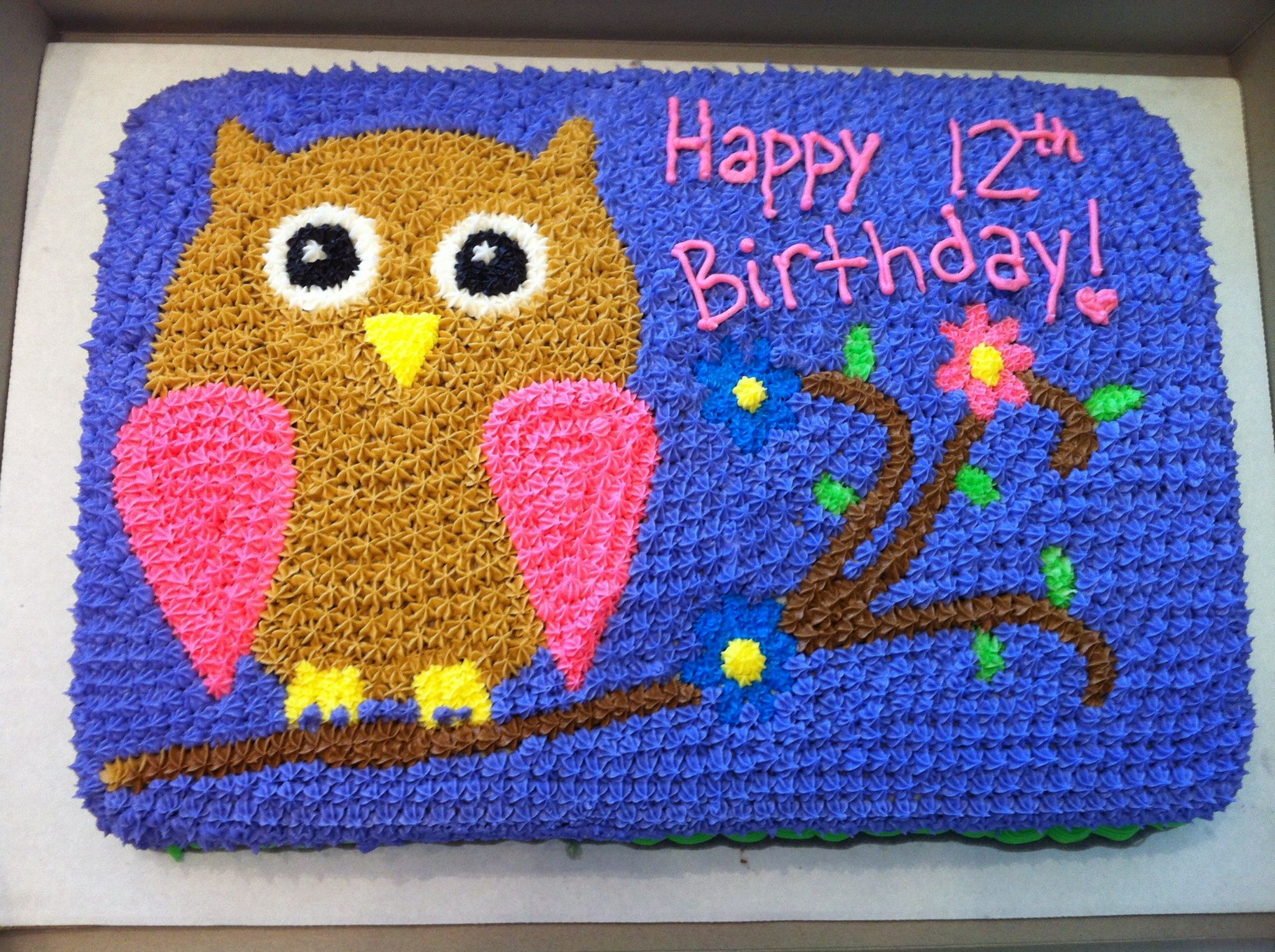 Mikayla S 12th Birthday Cake Owl With Flowers On A Branch