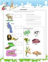 1st Grade Science Worksheets For Kids Pdf Science Worksheets 1st Grade Science Science Activities For Kids