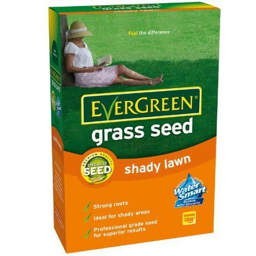 EverGreen Multi Purpose Grass Seed 210g carton * Check out this great product.