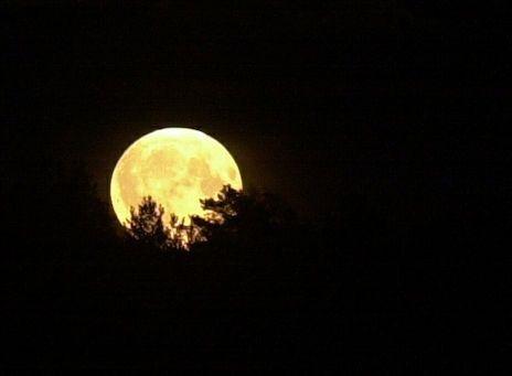 Kalenterin mukaan täysikuu on tänään joulupäivänä.
