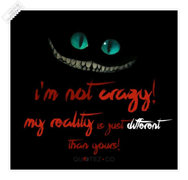 I M Not Crazy Funny Quote Quotez Co Weird Quotes Funny Funny Quotes Crazy Quotes