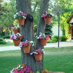Hangapot Customer Added Hanging Clay Pots Of Impatiens To This Tree Trunk In 2021 Hanging Plants Outdoor Hanging Plants Hanging Flower Pots