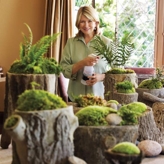 Live Moss Centerpiece Diy The Polished Pebble Gardens