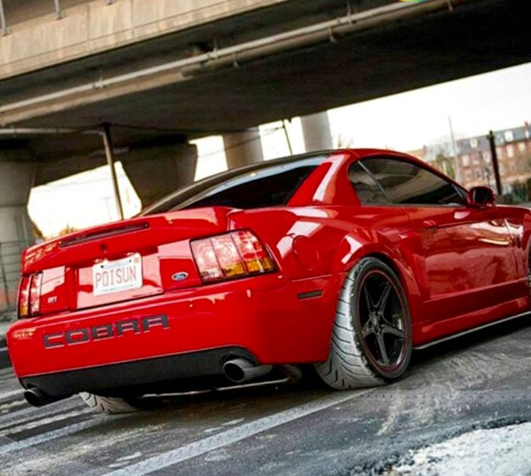 Svt Cobra 2002 Ford Mustang Gt 60s Muscle Cars