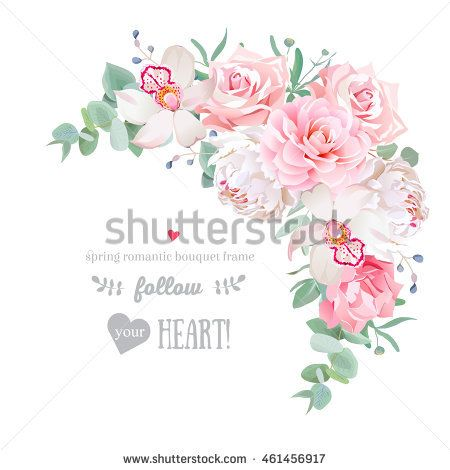 Delicate Floral Vector Frame With Peony Camellia Rose Orchid