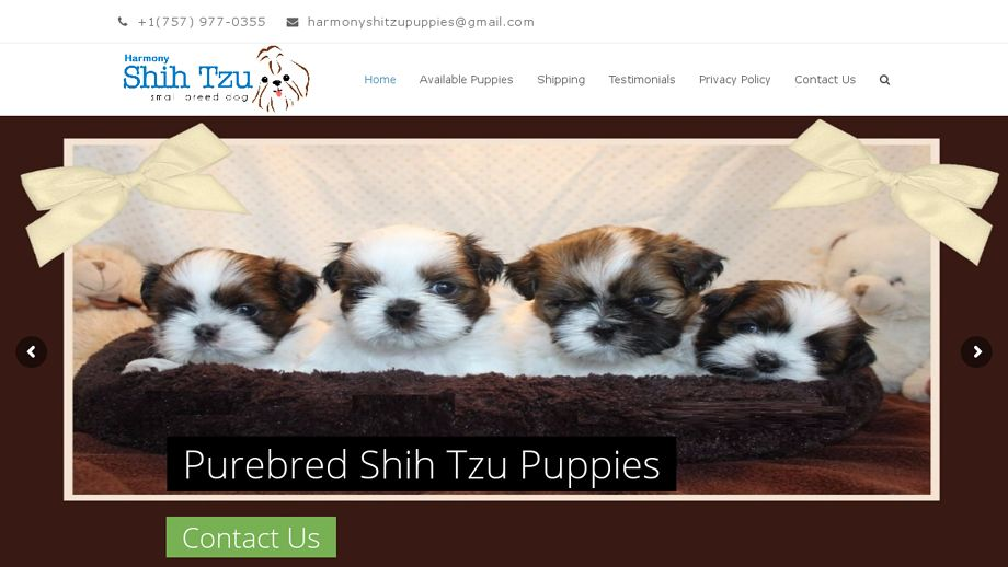 Harmonyshihtzupuppies Com In 2020 Shih Tzu Pets Shih Tzu Puppy