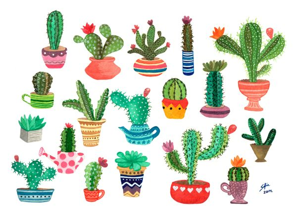 cactus en acuarela by sofia martinez a via behance pinterest aquarelles cactus et le. Black Bedroom Furniture Sets. Home Design Ideas