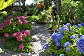 quirky gardens - Google Search