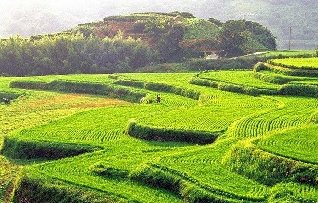 While Hapcheon Known As One Of The Most Beautiful Mountains Of Korea The Terraced Rice Fields