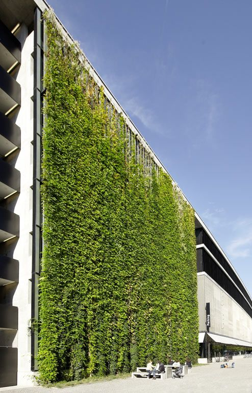 Pin By Joe S Videos On Architecture Green Facade Green