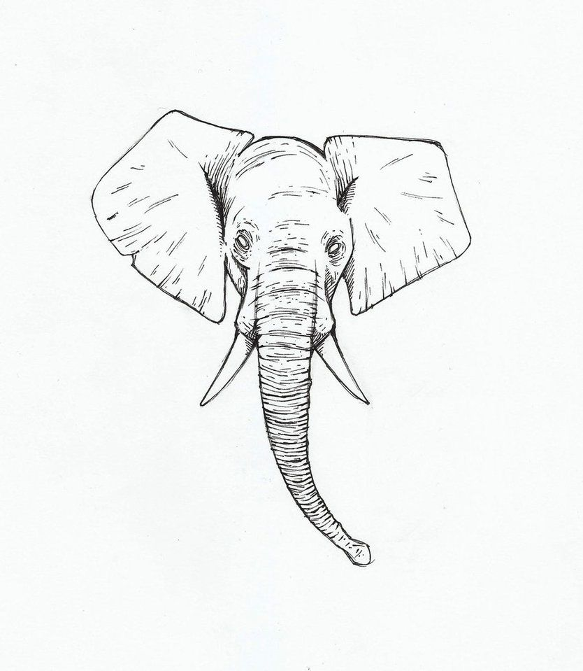 Elephant Head Tattoo Elephant Head Tattoo Easy Elephant Drawing Elephant Head Drawing