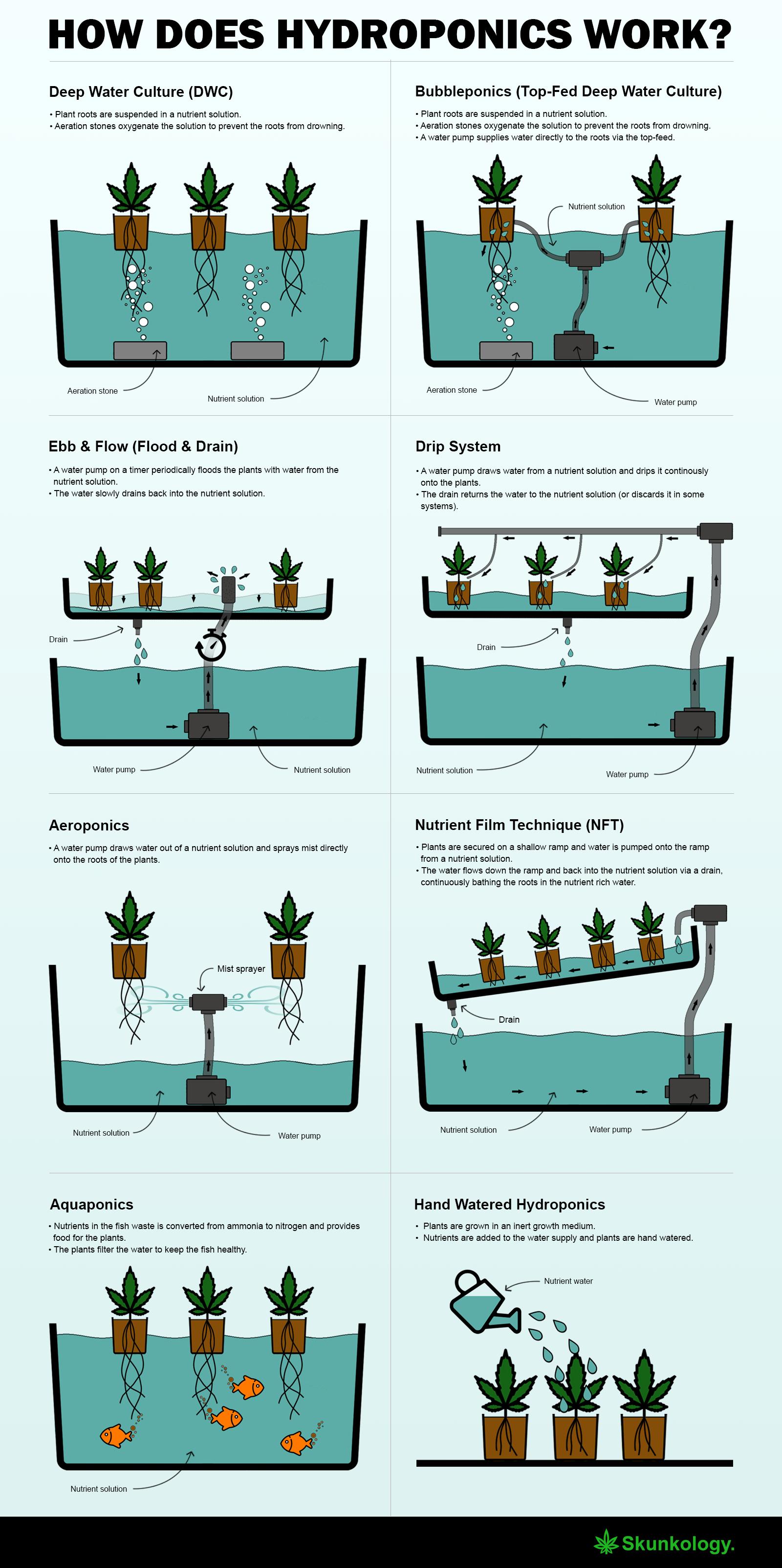 How does hydroponics work? - Infographics   Aquaponics   Pinterest ...