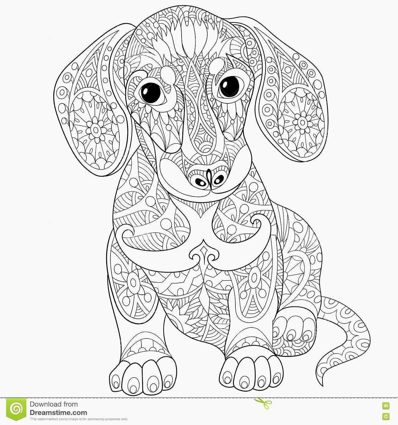 Coloring Pictures Of Dogs New Dachshund Coloring Pages Luxury Dbz