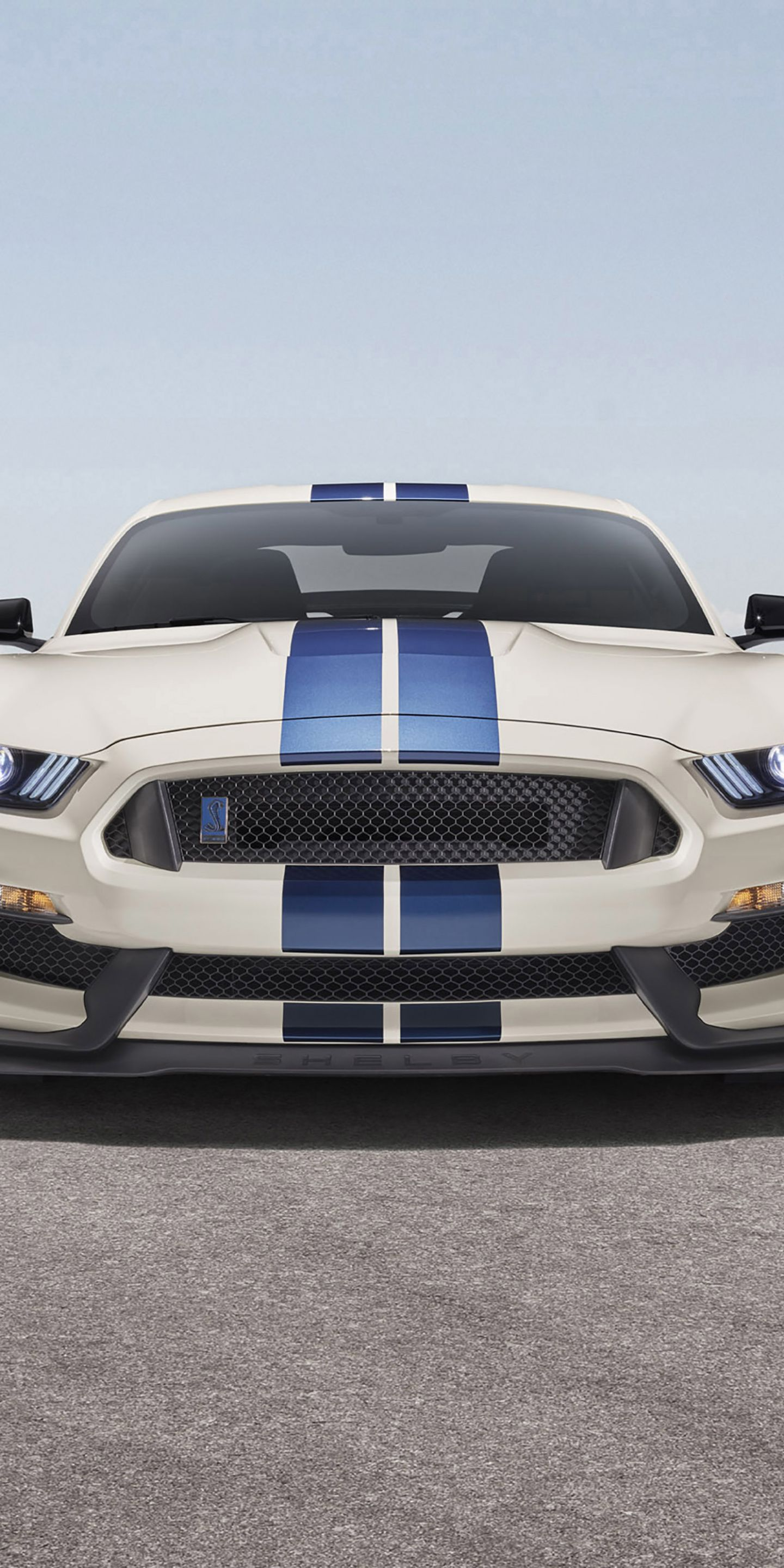 1440x2880 White Ford Mustang Shelby Gt350 Wallpaper Ford Mustang Shelby Ford Mustang Mustang Shelby
