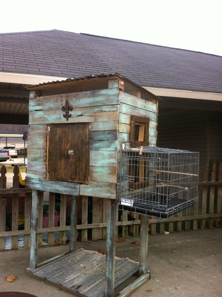 I built this pigeon loft out of old wooden pallets and for Pigeon coop ideas