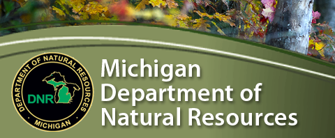 Are there cougars in Michigan? DNR - Department of Natural