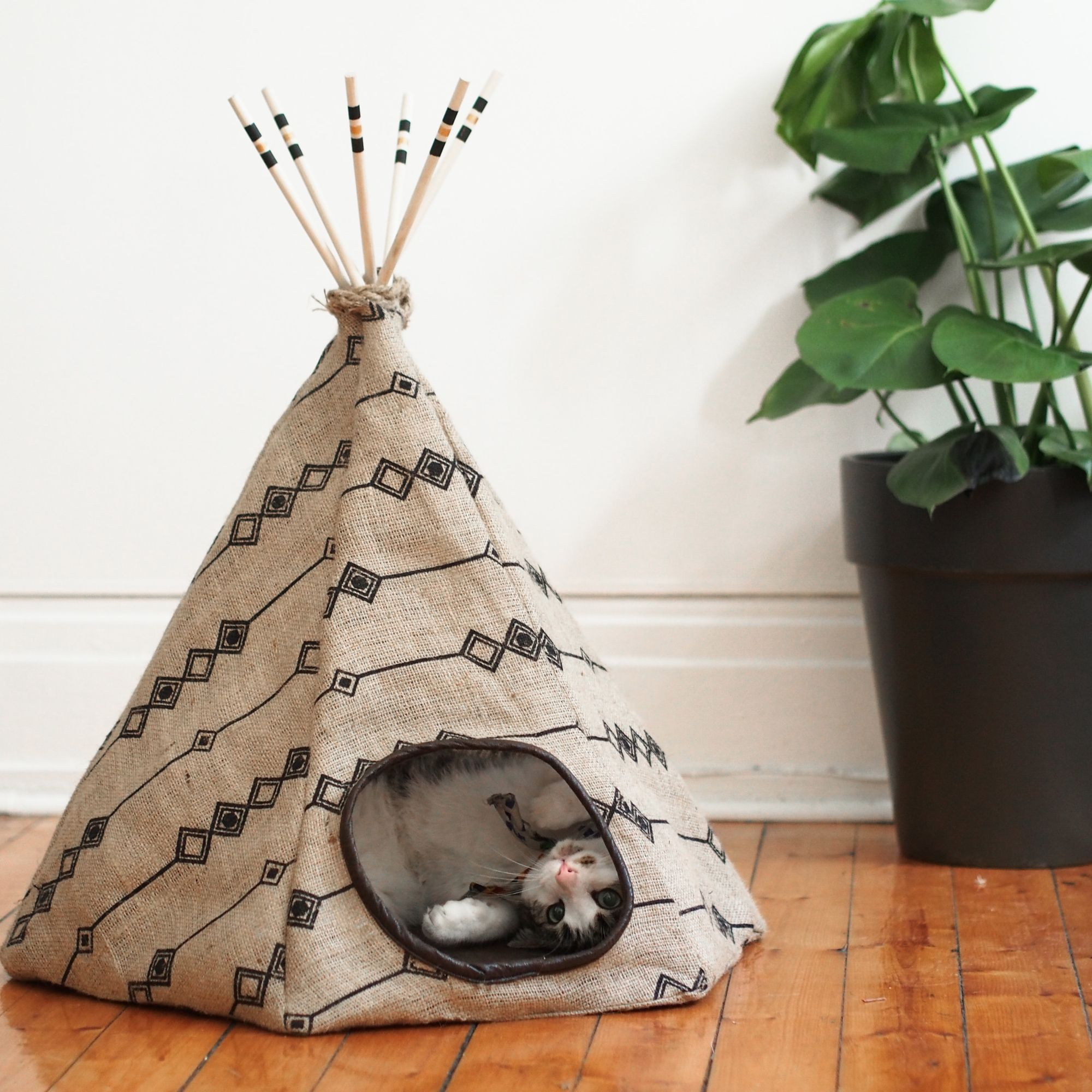 la fois o j 39 ai cr un tipi pour chat gagnez le poussin stitch cat pinterest. Black Bedroom Furniture Sets. Home Design Ideas