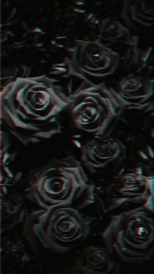 Pin By Tamara Jakus On Flowers In 2020 Black Roses Wallpaper