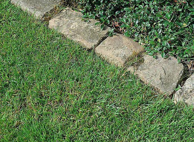 La pose du0027une bordure en pavés pour délimiter une allée Bordure - pave pour terrasse exterieur
