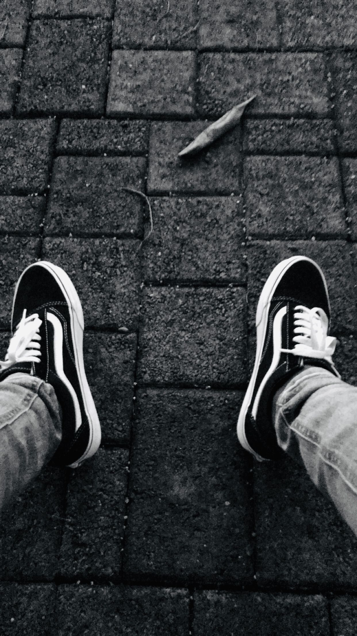 Vans skinnyjeans blackandwhitephotography blackandwhite i love vans 🔥