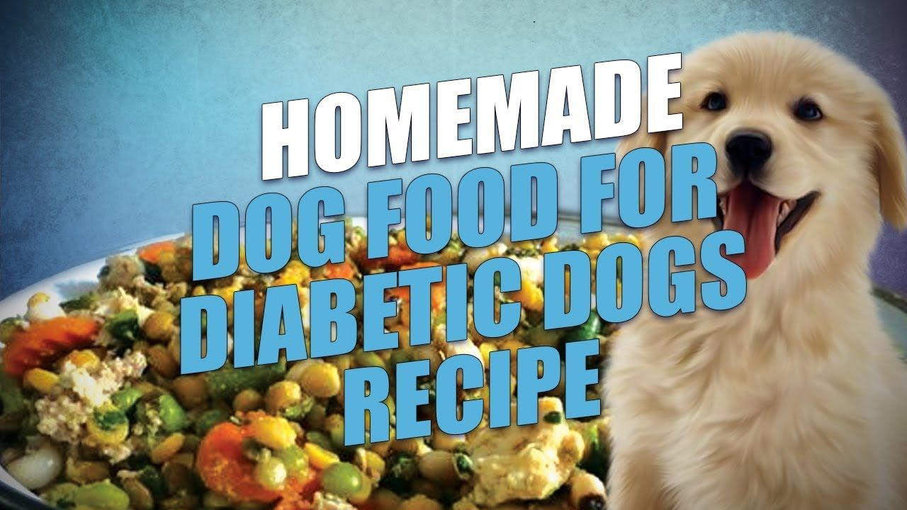 Homemade Dog Food For Diabetic Dogs Recipe Easy To Make