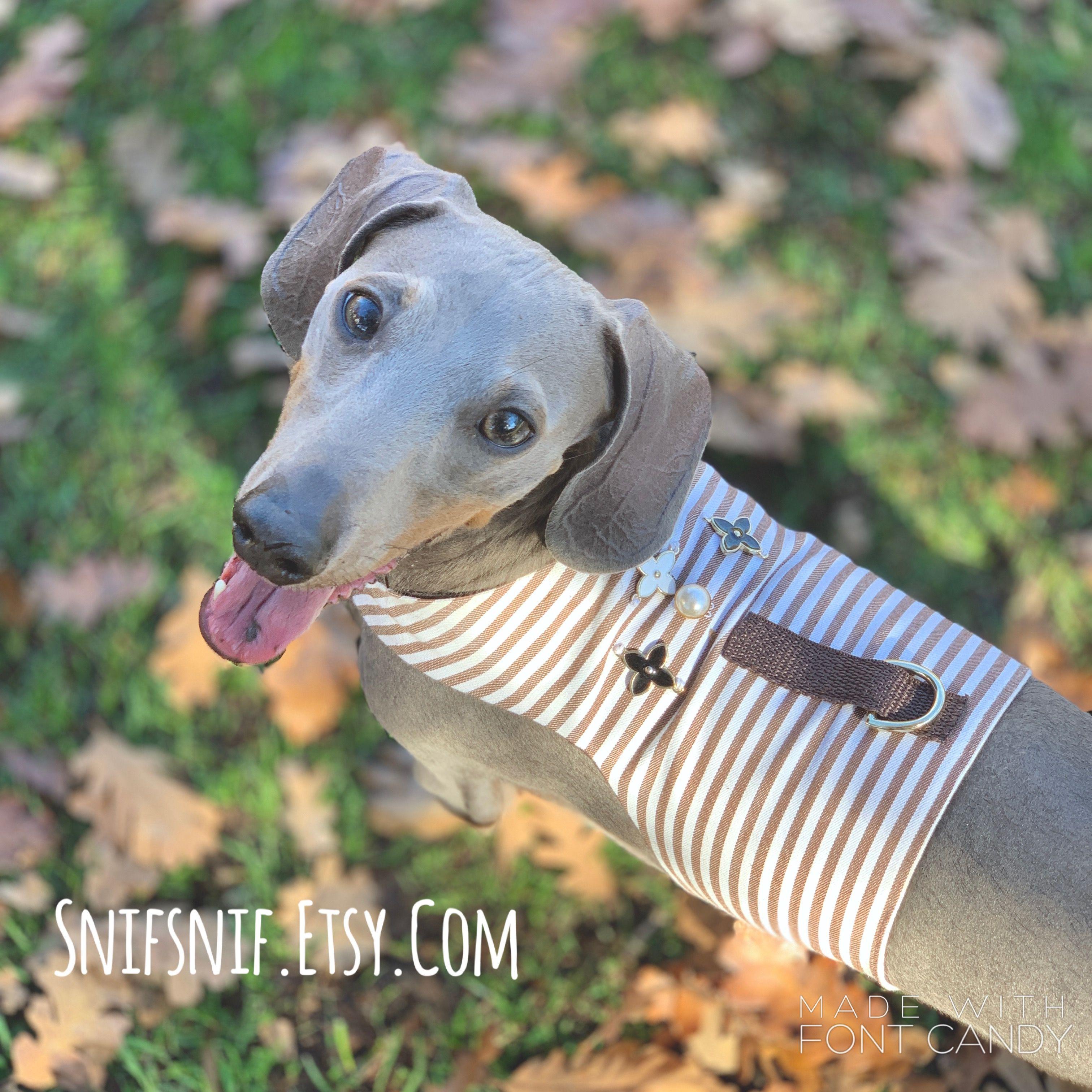 Lv Inspired Designer Dog Jacket Dog Harness No Choke Dog Harness