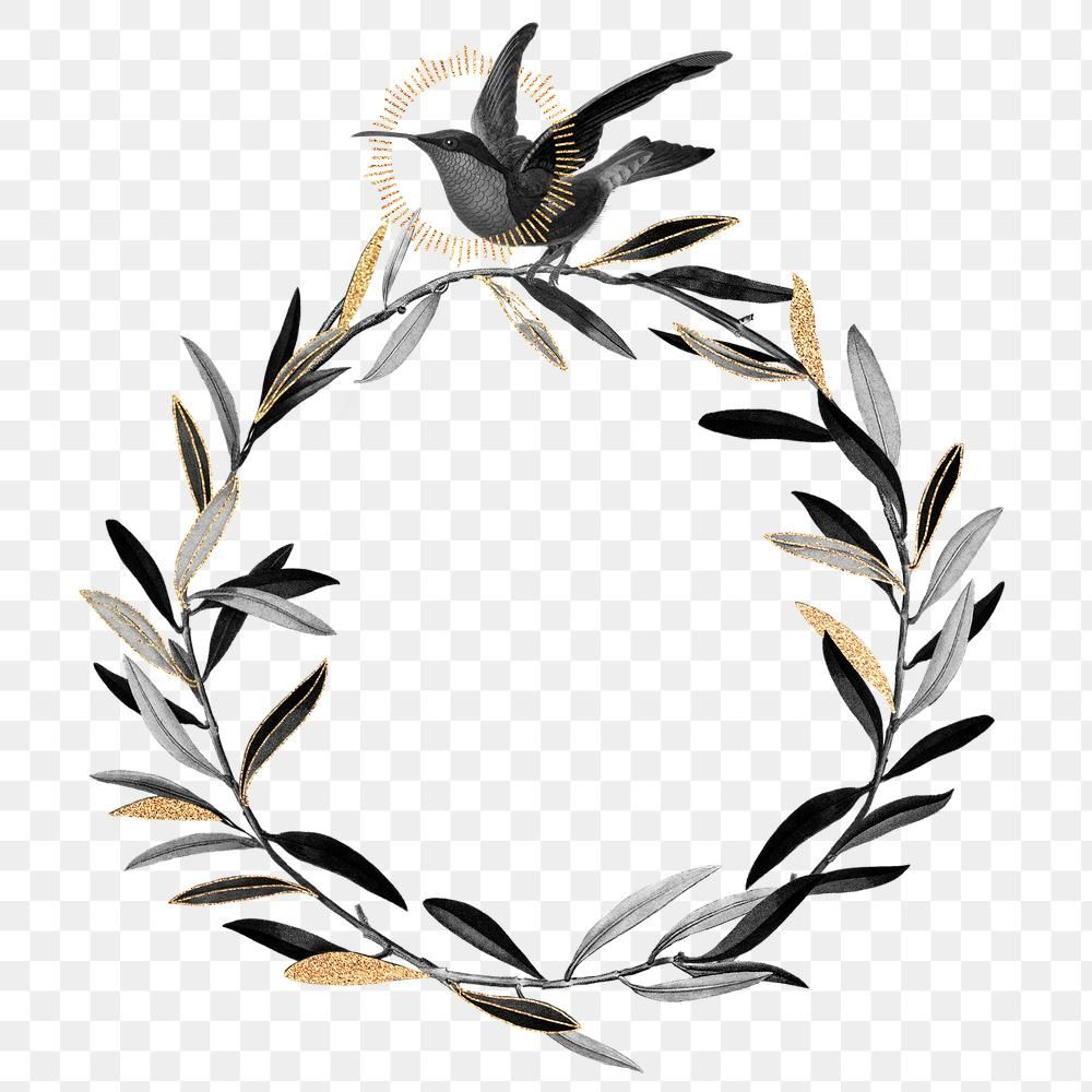 Olive Branches Wreath Png Black Botanical Premium Image By Rawpixel Com Noon Olive Branch Wreath Olive Branch Christmas Wreaths