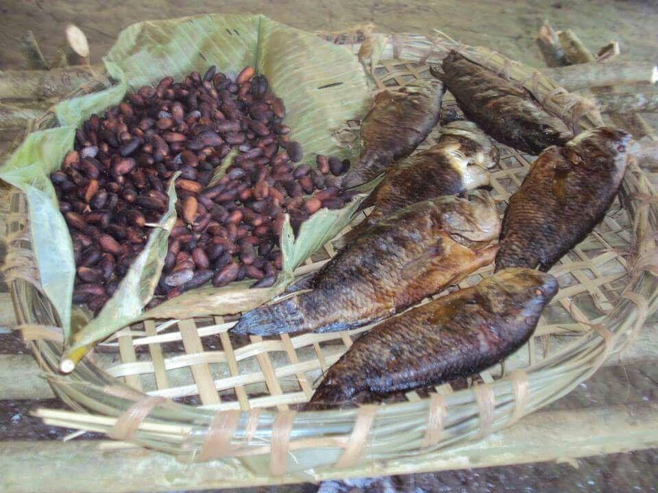 Comida indígena Maleku, Guatuso, Alajuela, Costa Rica. | Meat jerky, Food,  Meat