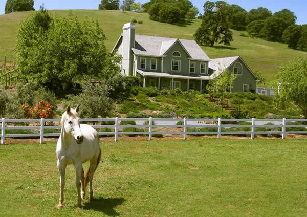 Turnout For Your Horses Is Available In These Picturesque Pastures