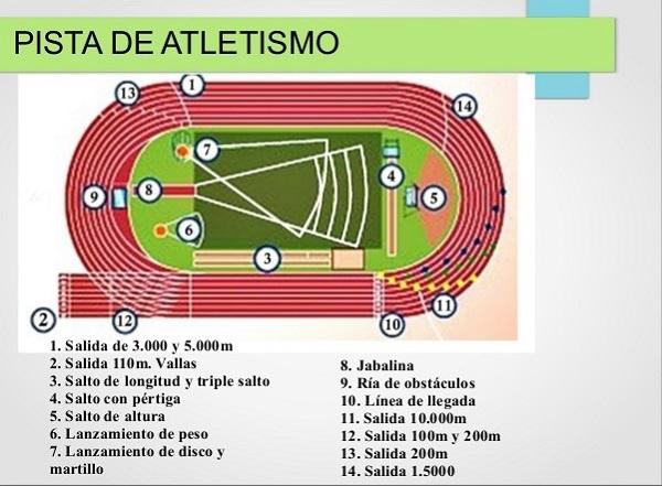 Pista De Atletismo Dibujo Y Medidas Busqueda De Google Pista De Atletismo Atletismo Dibujo Salto Con Pertiga