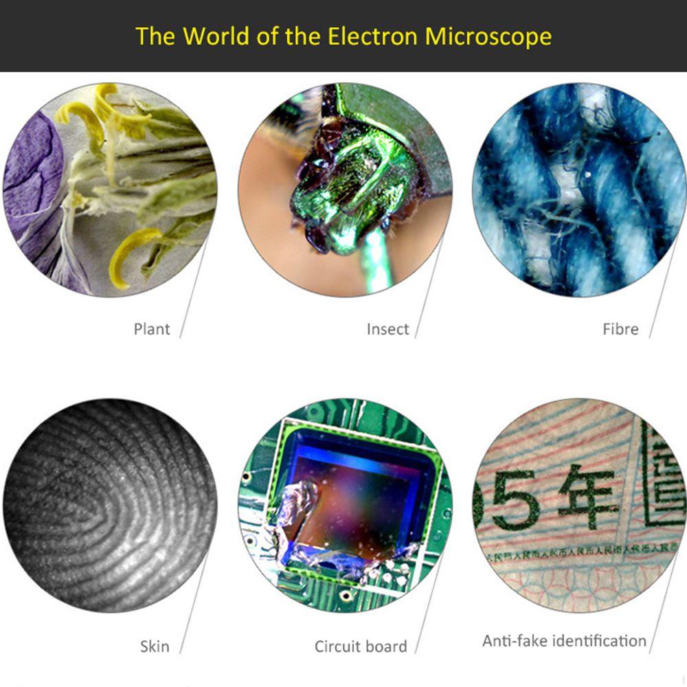 Industrial & Scientific Digital microscope, Plant