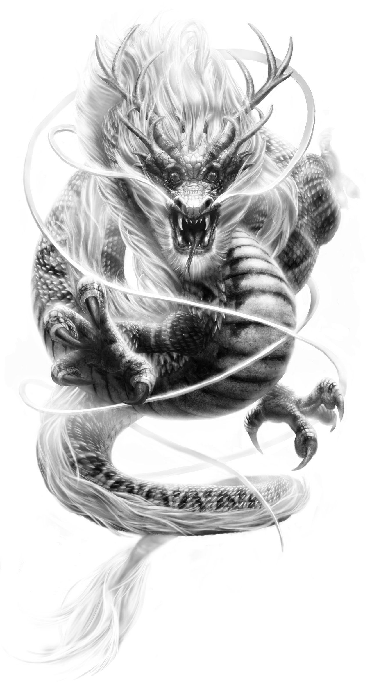 Phoenix Vs Dragon Wallpaper iPhone