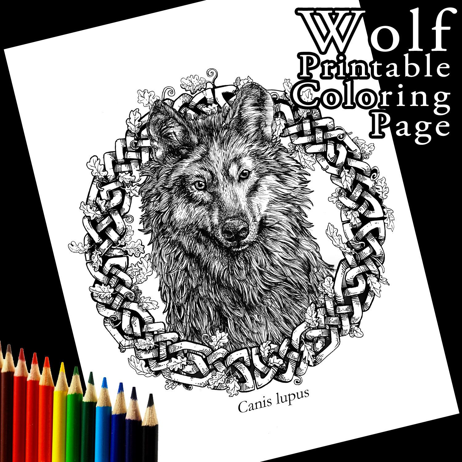New to Atramentaria on Etsy: Grey Wolf Printable Coloring Page ...