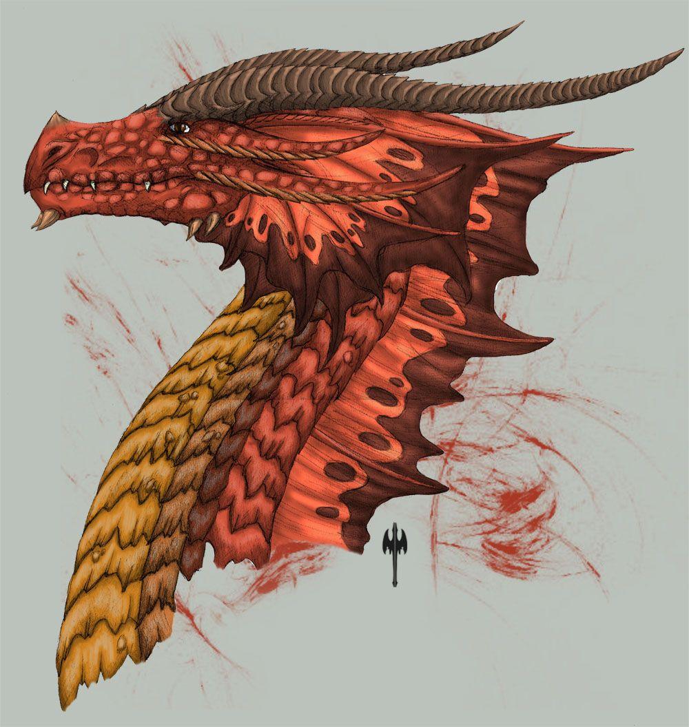 Red Dragon Head Side View By Sheranuvaiantart On @deviantart