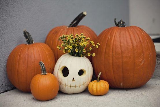 Cute White Pumpkin Pumpkin Display Pumpkin Halloween Pumpkins