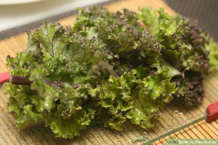 How to blanch kale kale freezing kale blanch