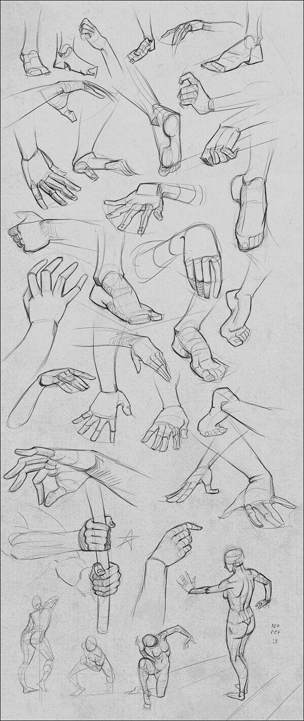 Pin de satish dombre en dr dombre | Pinterest | Anatomía, Dibujar y ...
