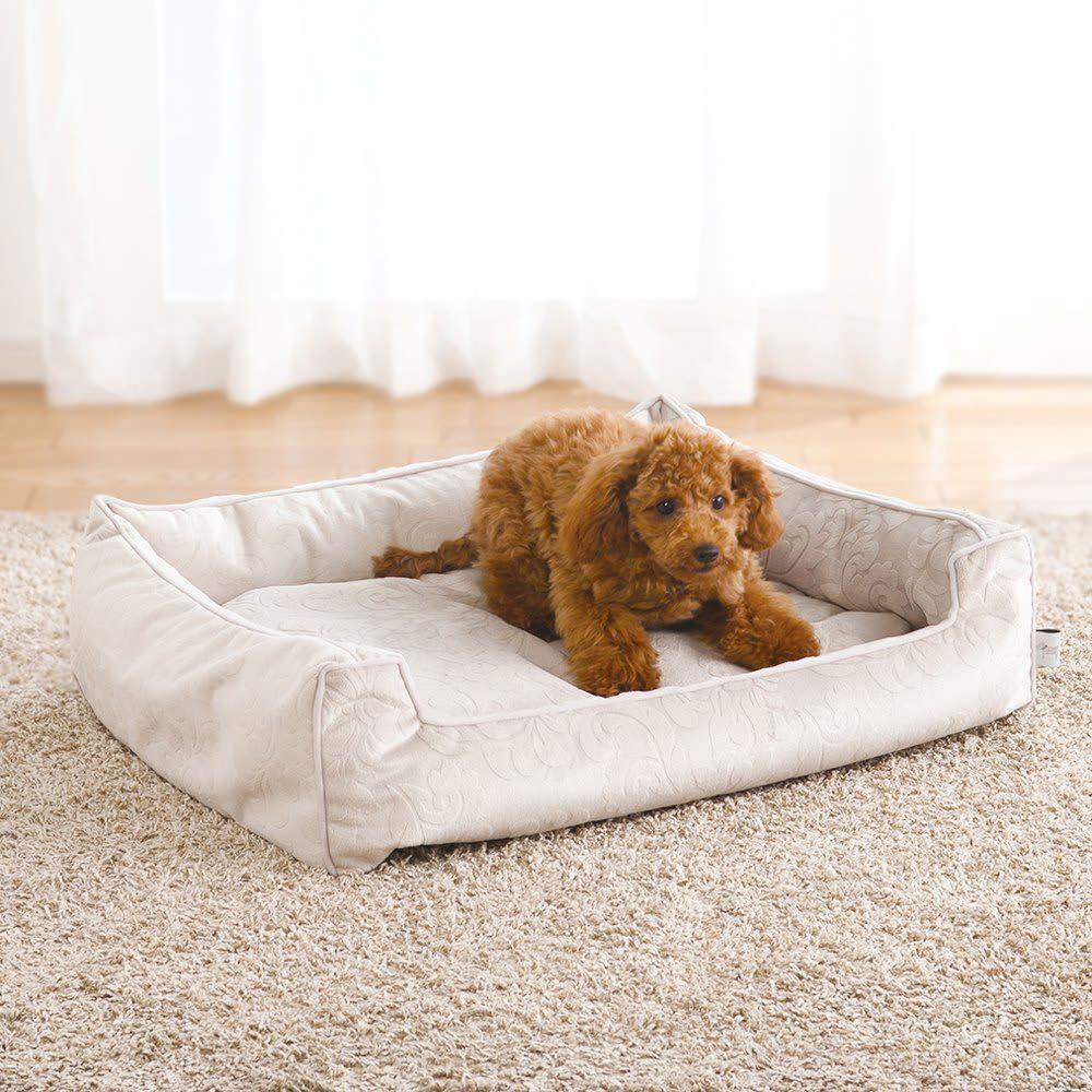 防水仕様のペット用ベッド S 通販 ディノス ペット用ベッド ペット ディノス