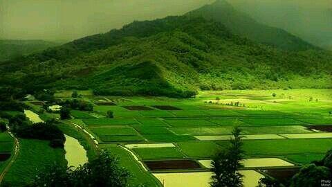 Kerala In India Hd Nature Wallpapers Green Nature Wallpaper Nature Photography