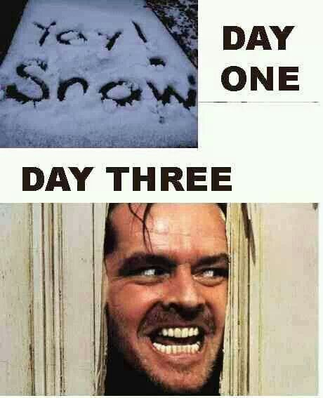 I M On Day 5 Of Snow Days 1 07 14 Funny Pictures Winter Humor Snow Humor